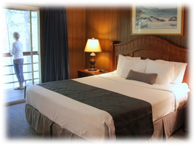 Standard room with king bed.